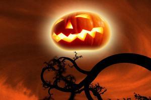 Tuyển tập bộ hình nền cho điện thoại chúc mừng halloween full hd