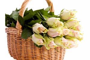 15 hình ảnh giỏ hoa làm quà tặng không nên bỏ qua