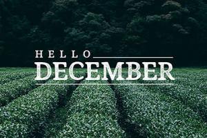 Bộ ảnh bìa chào tháng 12 cực chất không thể bỏ qua