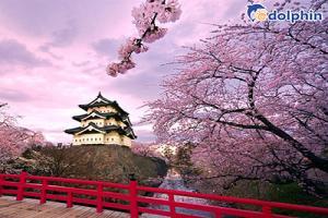 Tour du lịch Nhật Bản tết nguyên đán 6 ngày 5 đêm với nhiều chương trình hấp dẫn
