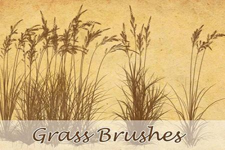 Chia sẻ Grass Brushes miễn phí